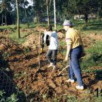 Hauptschüler 1987 bei der Arbeit, Foto: Zöhren